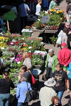 Schaffhauser Wochenmarkt in der Vordergasse  Dienstag 7:00 - 11:00 Uhr Samstag 7:00 - 12:00 Uh