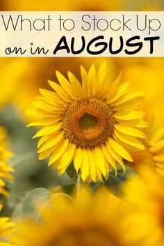 What to Stock Up on in August - The Frugal Navy Wife Best Money Saving Tips, Ways To Save Money, Saving Money, Money Savers, Grocery Savings Tips, Emergency Preparedness, Survival, Budgeting Money, Frugal Tips