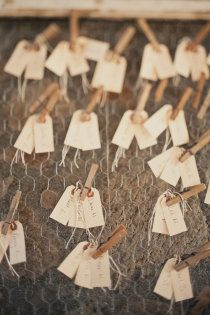 clothespins and chicken wire.