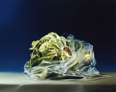 Food evolution, even our fruit and veg is packaged up for our convenience Tjalf sparnaay Rembrandt, Hyperrealism Paintings, Hyperrealistic Art, Photorealism, Tjalf Sparnaay, Hyper Realistic Paintings, Food Painting, Dutch Artists, Realism Art