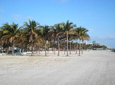 Best of Miami Beach, FL Tourism - Tripadvisor Spring Break Destinations, Spring Break Trips, Florida Vacation, Florida Travel, Miami Florida, Miami Beach Hotels, South Padre Island, Travel Memories, Sandy Beaches