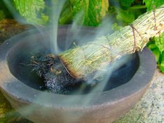 "Studies Reveal ""Smudging"" Eliminates Dangerous Bacteria in the Air 