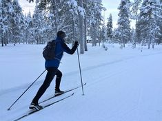 A beginner's guide to cross-country skiing Cross Country Ski Boots, Jackson Hole Skiing, Nordic Skiing, Ski Jumping, Travel Reviews, Greatest Adventure, Winter Sports, The Great Outdoors, Family Travel