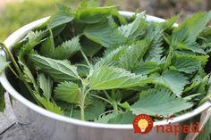 Je bohatá na minerály, vitamín C, vitamín D, železo, a pomáha telu metabolizovať bielkoviny.