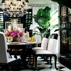 Love the many hurricane lamps and huge  potted plant