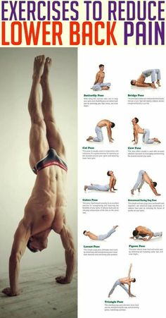 Whether from an injury or degenerative disease (such as osteoarthritis), most cases of back pain can be reduced with regular exercise and tailored workouts. Stretching, strengthening, and conditioning exercises can result in stronger muscles that support Yoga Fitness, Fitness Workouts, Physical Fitness, Gym Workout Tips, Weight Training Workouts, Training Exercises, Body Weight Training, Plank Workout, Dumbbell Workout