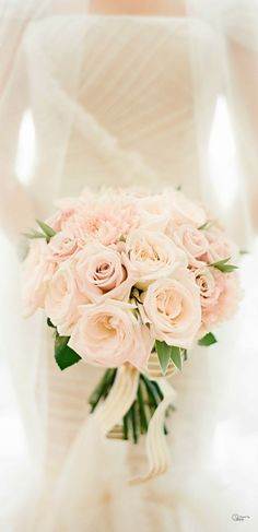 beautiful pale pink flowers.