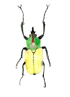 Scarabée peinture aquarelle originale, illustration d'insecte de format 24x 32cm, aux couleur jaune et vert.