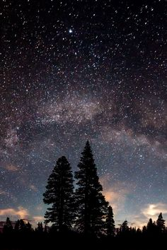 Stars…Nature…Beauty