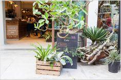 松山●Fujin Tree 353 Cafe by simple kaffa●富錦街的巴黎咖啡館 #富錦街 #台北 #fujinstreet #Taiwan #taipei #FujinTree353Cafe #cafe