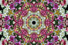 Striking Flowers and Candies Mandalas  Phosphene is a series by photographer Cristina Burns who gathered flowers candies and random items in compositions similar to mandalas. The circular shape is given thanks to a mirror effect. A selection of her work is available in the gallery.            #xemtvhay
