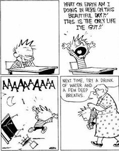 Calvin and Hobbes - @Maria Canavello Mrasek because there are only so many times I can email you a calvin and hobbes cartoon before I have to resort to pinning