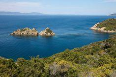 Situé en plein cœur de la Méditerranée, Le Parc National de Port-Cros est un territoire d'exception protégé. Découvrez toutes les richesses de ses îles d'Or sur le blog : http://les-echappees.belambra.fr/week-end-dans-le-parc-national-de-port-cros-lexotisme-a-portee-de-main/