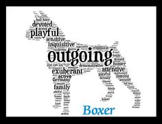 Boxer Illustration Boxer Print Boxer Artwork Custom by PetsLuv, $20.00