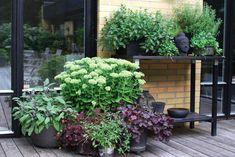 Back Garden Design Backyard Ideas For Small Yards, Small Backyard Landscaping, Backyard Designs, Small Back Gardens, Back Garden Design, Chicken Garden, Pot Jardin, Garden Structures, Garden Planning