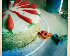 Carrot cake alias Mrkvový dort Kitchenette, Carrot Cake, Carrots, Carrot Cakes, Carrot, Kitchenettes