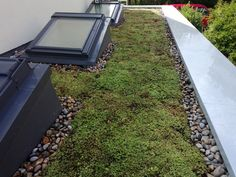 Sedum roofs add a decorative finish to your flat roof. Use flat roof kerbs, such as the VELUX ECX, so you can add pitched roof windows to enjoy natural light and views below.