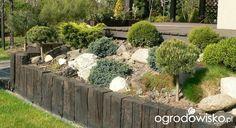Skarpa w ogrodzie - strona 28 - Forum ogrodnicze - Ogrodowisko Garden Forum, Boho Room, Backyard, Patio, Vegetable Garden, Organic Gardening, Garden Landscaping, Landscape, Plants