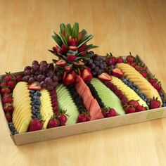 Seasonal Fruit Platter, Small - food
