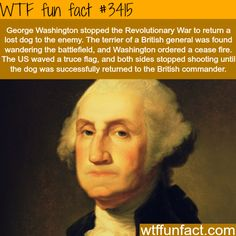 George Washington stopped a battle for a dog - Faith In Humanity Restored! - WTF fun facts
