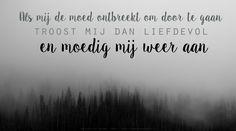 Als mij de moed ontbreekt om door te gaan, troost mij dan liefdevol en moedig mij weer aan. Heer wijs mij Uw weg – Sela #Kinderen, #Moed, #Weg http://www.dagelijksebroodkruimels.nl/heer-wijs-mij-uw-weg-sela/