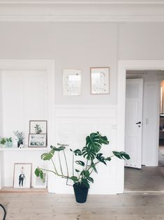 white danish decor | FindersKeepers Apartment Store No. 9 – Bungalow5