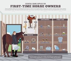 Are you thinking of buying your first horse? Before you do that, you must first understand what are the essential supplies and equipment you will need to properly take care of a horse.