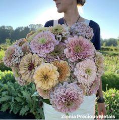 Petal Pushers, Garden Journal, Zinnias, Bar Mitzvah, Floral Arrangements, Floral Wreath, Bouquet, Bloom, Photo And Video