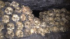 "Skulls in the queue for the ""Skull Island"" ride. Photo Credit: Robert Silk"