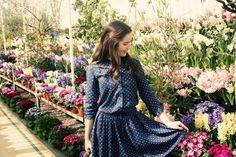 The Uniqlo x Celia Birtwell Classical Star print shirt dress #UniqloCeliaB
