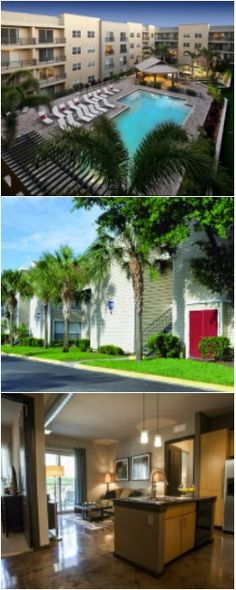 19 best tampa apartments images tampa apartments apartment finder rh pinterest com