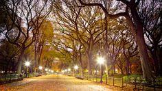 Central Park is stunning #Manhattan #NYC #NewYork #iGottaTravel