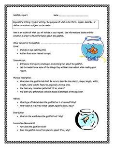 Bat Informational Report Writing Sheets, 12 Total Pages! 4th Grade Ela, 3rd Grade Writing, Informational Writing, Narrative Writing, Moon Activities, Teacher Pay Teachers, Teacher Stuff, Moon Book, Rough Draft