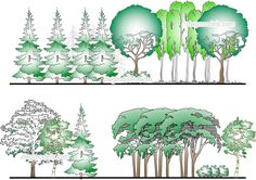 Forest - CAD Blocks, free dwg file.