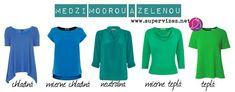 Medzi modrou a zelenou - Supervizáž