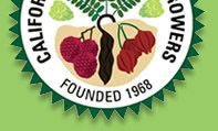 California Rare Fruit Growers - great resource for care of fruit trees. Also has tailored info for bay area microclimates. (http://www.crfg.org/chapters/golden_gate/grow.htm too)