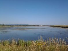 """View of the """"Saline"""" natural reserve in Tarquinia, Italy Land Scape, Latina, Beach, Water, Travel, Outdoor, Rome, Italia, Mountain"""