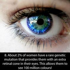 New eye color genetics posts 27 Ideas Blue Eye Facts, Eye Color Facts, Facts About Blue Eyes, Pretty Eyes, Cool Eyes, Beautiful Eyes, Blue Quotes, Fact Quotes, Quotes Quotes
