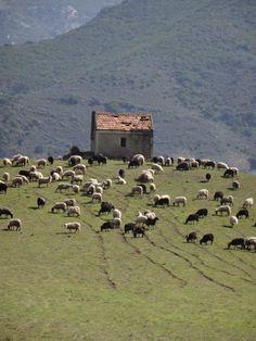 La montagne Corse -
