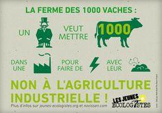 Non à la ferme des 1000 vaches !