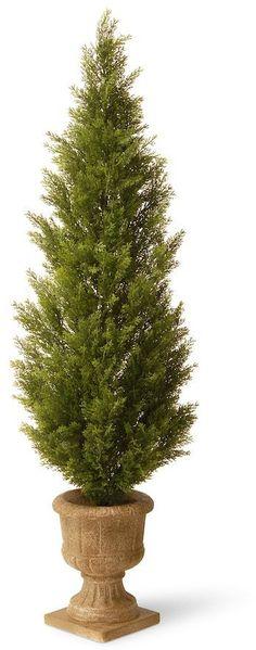 "National Tree Company 60"" Artificial Elegant Arborvitae Tree"