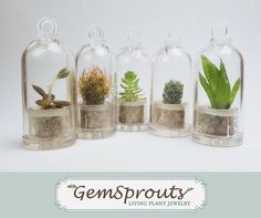 Hey, I found this really awesome Etsy listing at http://www.etsy.com/listing/98840973/set-of-5-secret-surprise-dome-gemsprout