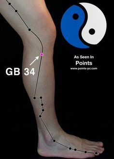 Acupuncture Point: Gallbladder 34 – Acupuncture Technology News Got ankle pain? Got shoulder pain? Got hip problems? GB 34 is good for ANY problems related to tendons and ligaments. Technology Careers, Medical Technology, Technology Innovations, Medical Coding, Energy Technology, Technology Gadgets, Acupuncture Points, Acupressure Points, Yin Yang