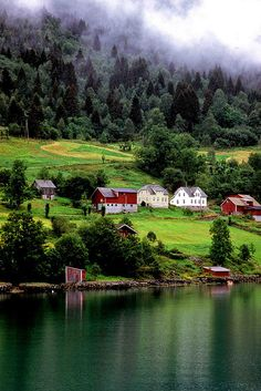 In the Hardagenfjord, Norway by sanguedolces, via Flickr