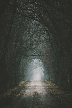 road//
