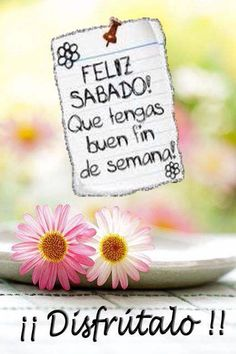 The perfect Feliz Sabado Animated GIF for your conversation. Discover and Share the best GIFs on Tenor. Good Morning Coffee, Good Morning Good Night, Good Morning Quotes, Happy Weekend, Happy Saturday, Happy Day, Sabbath Quotes, Happy Sabbath, Animated Heart