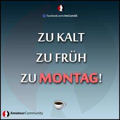 Wir wünschen euch trotzdem einen schönen Start in die neue Woche!  ..oder einen starken #Kaffee! ☕  >> http://www.amateurcommunity.social <<  - - - #moinmoin #wochenstart #montag #schnee #mondaymotivation #monday #weekend #wochenende #schneefall #kalt #morgens amateurcommunity #amateur #community #demdebate #fakt #ibes #ranNFL #annewill #polizeiruf110 #AusOpen #Broncos #CriticsChoice #DENvsPIT #CriticsChoiceAwards #ZDFmoma #Sprudeltag #Feinstaubalarm #followme