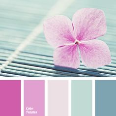 A palette consisting of rather calm tones. Pink and coral match the turquoise splendidly, without creating a significant contrast, while beige and pale bro
