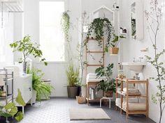 観葉植物のあるバスルームのアイデア集   folk