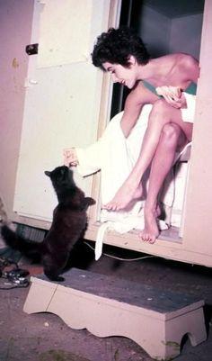 0 Elizabeth Taylor feeding a black cat on set Elizabeth Taylor, Old Hollywood, Golden Age Of Hollywood, Classic Hollywood, Animal Gato, Mundo Animal, Divas, Crazy Cat Lady, Crazy Cats